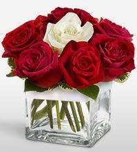 Tek aşkımsın çiçeği 8 kırmızı 1 beyaz gül  Gümüşhane çiçek yolla , çiçek gönder , çiçekçi