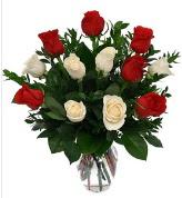 Vazo içerisinde 6 kırmızı 6 beyaz gül  Gümüşhane 14 şubat sevgililer günü çiçek