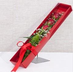 Kutu içerisinde 3 adet kırmızı gül  Gümüşhane güvenli kaliteli hızlı çiçek