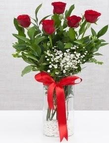 cam vazo içerisinde 5 adet kırmızı gül  Gümüşhane online çiçekçi , çiçek siparişi