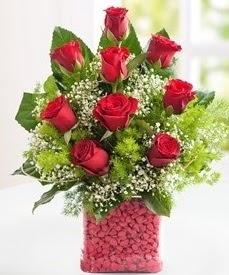 Cam içerisinde 9 adet kırmızı gül  Gümüşhane çiçek online çiçek siparişi