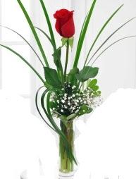 Cam içerisinde 1 kırmızı gül  Gümüşhane çiçekçiler