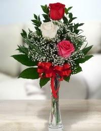 Camda 2 kırmızı 1 beyaz gül  Gümüşhane uluslararası çiçek gönderme