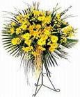 Gümüşhane hediye çiçek yolla  Sari kazablanka Ferforje