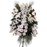 Gümüşhane yurtiçi ve yurtdışı çiçek siparişi  Ferforje beyaz renkli kazablanka