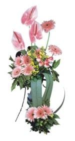 Gümüşhane ucuz çiçek gönder  Pembe Antoryum Harikalar Rüyasi