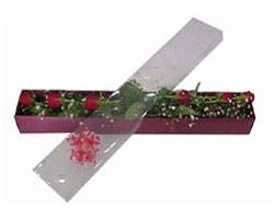 Gümüşhane çiçek gönderme sitemiz güvenlidir   6 adet kirmizi gül kutu içinde