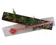 Gümüşhane 14 şubat sevgililer günü çiçek  3 adet gül.kutu yaldizlidir.