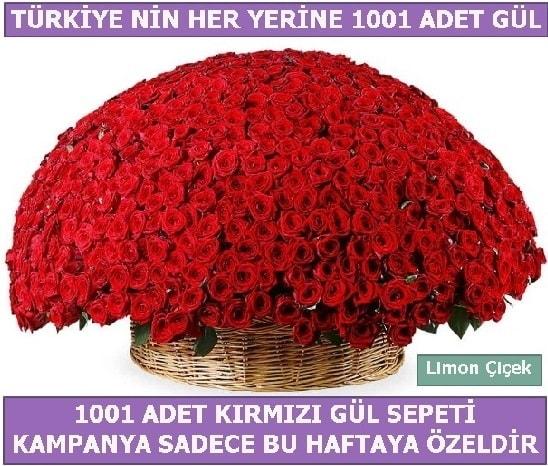 1001 Adet kırmızı gül Bu haftaya özel  Gümüşhane internetten çiçek satışı