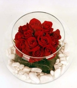 Cam fanusta 11 adet kırmızı gül  Gümüşhane çiçek siparişi vermek