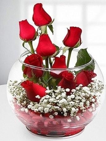 Kırmızı Mutluluk fanusta 9 kırmızı gül  Gümüşhane hediye sevgilime hediye çiçek