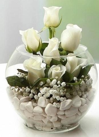 Beyaz Mutluluk 9 beyaz gül fanusta  Gümüşhane hediye sevgilime hediye çiçek