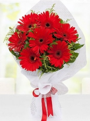 Kırmızı Gelbera Buketi  Gümüşhane çiçek mağazası , çiçekçi adresleri