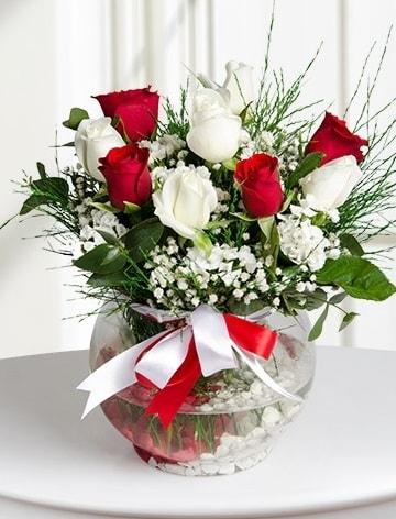 Aşk Küresi  5 beyaz 5 kırmızı gül fanusta  Gümüşhane çiçek online çiçek siparişi