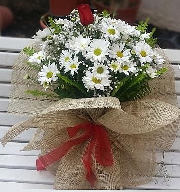 Papatya 1 adet kırmızı gül buketi  Gümüşhane çiçek servisi , çiçekçi adresleri