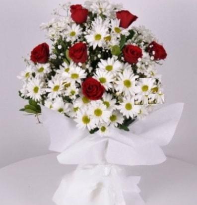 7 adet kırmızı gül ve papatyalar krizantem  Gümüşhane çiçek online çiçek siparişi