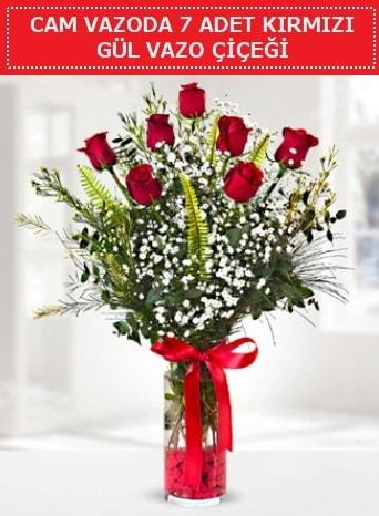 Cam vazoda 7 adet kırmızı gül çiçeği  Gümüşhane çiçekçiler