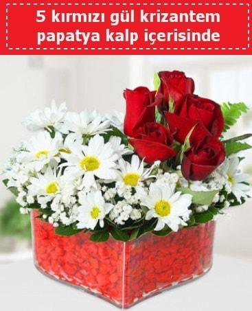 mika kalp içerisinde 5 kırmızı gül papatya  Gümüşhane çiçek siparişi vermek