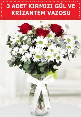 3 kırmızı gül ve camda krizantem çiçekleri  Gümüşhane çiçek siparişi vermek