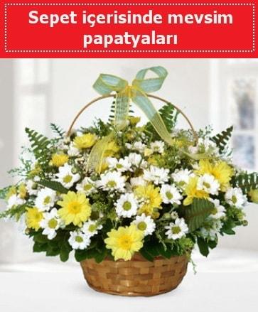 Sepet içerisinde mevsim papatyaları  Gümüşhane uluslararası çiçek gönderme