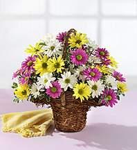 Gümüşhane çiçek servisi , çiçekçi adresleri  Mevsim çiçekleri sepeti